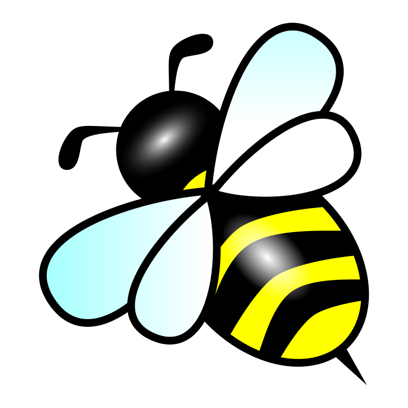 BumbleBee IT Solutions